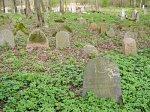 Довбучки, кладбище татарское