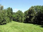 Новобережное, усадьба: парк, кон. XIX в.