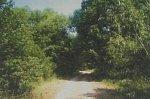 Баранки, усадьба: парк (фрагменты), XIX в.