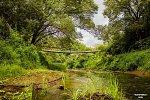 Бешенковичи, мост подвесной (дерев.)