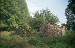 Бояры (Мядел. р-н; Старог. сс), усадьба:  хозпостройка (руины), XIX-1-я пол. XX вв.