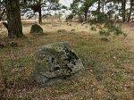 Коробчицы, кладбище татарское