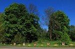 Крошин, усадьба: парк, XIX в.