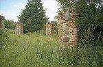 Леонполь, усадьба: хозпостройка (руины), XIX-1-я пол. XX вв.