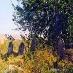 Липнишки, кладбище еврейское
