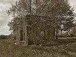 Лисовчицы, церковь св. Иоанна Крестителя (дерев.; руины), XIX в.