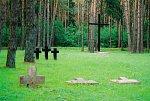 Литва (Ляхов. р-н), кладбище солдат 1-й мировой войны, 1915-18 гг.