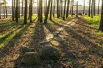 Муляры, кладбище солдат 1-й мировой войны, 1915-18 гг.