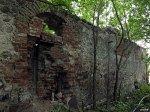 Огородники (Камен. р-н; Огородн. сс), усадьба: бровар (руины), XIX в.