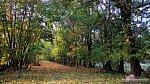 Сунаи, усадьба: парк, XIX в.