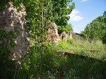 Сюлки, усадьба: конюшня (руины), XIX в.