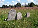 Видзы, кладбище еврейское