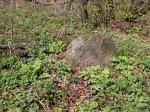 Волчин, кладбище еврейское