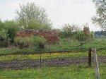 Жирмуны (Лидский р-н), усадьба: служебные постройки (руины), кон. XVIII-XIX вв.