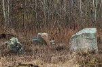 Барсуки (Докшиц. р-н), каменный крест