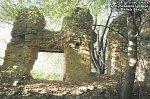 Бол. Бакшты, усадьба: бровар (руины), XIX-нач. XX вв.