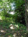 Дашковка, усадьба: мемориальный камень