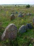 Дрибин, кладбище еврейское