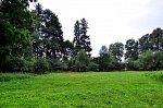 Головчицы (Пружан. р-н), усадьба: парк (фрагменты), XIX в.