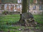 Каштановка, усадьба Дзеконских: парк: камень-кресло