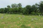 Копыль, кладбище еврейское