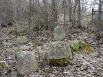 Лебедево, кладбище еврейское