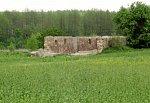 Миневщина, усадьба: хозпостройка (руины), XIX в.