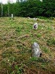 Миневщина, каменные могилы (археол.)
