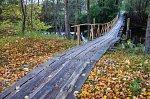 Паромец, мост подвесной (дерев.)