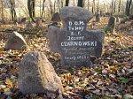Плебань, кладбище католическое: каменный крест