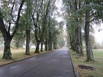 Порозово, усадьба: парк, XIX в.