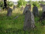Раков, кладбище еврейское, с 1642 г.