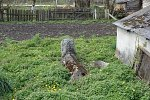 Рожанка, кладбище еврейское