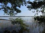 Щиковичи, озеро Баторино