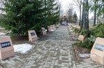 Славгород, памятная аллея захороненных после аварии на ЧАЭС деревень