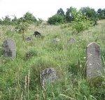 Сопоцкин, кладбище еврейское