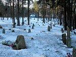 Судники (Вилей. р-н), каменные могилы (археол.)