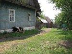 Вишнево (Волож. р-н), место дома Шимона Переса