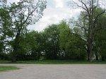 Войганы, усадьба: парк (фрагменты), XIX в.
