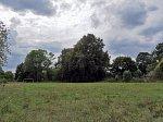 Задворье (Столбц. р-н), усадьба: парк (фрагменты), XIX в.?