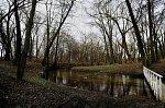 Залесье (Сморг. р-н), усадьба: парк, XIX в.