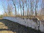 Залужье (Столбц. р-н), ограда церкви, XIX в.?
