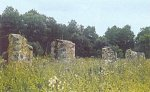 Заречье (Корел. р-н), усадьба: хозпостройка (руины), XIX в.?